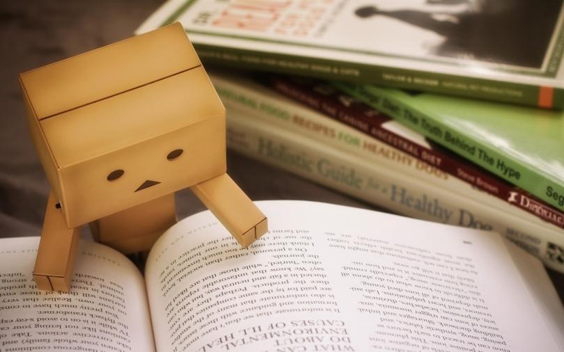 danbo_cardboard_robot_book_reading_96984_3840x2400
